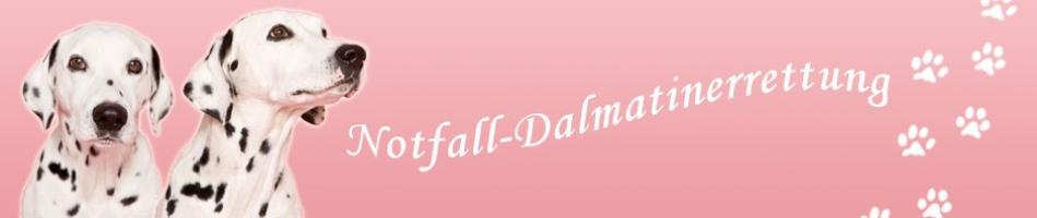 Notfall Dalmatinerrettung